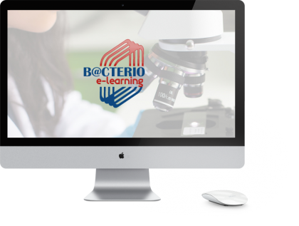 bacterio-programme-analyse